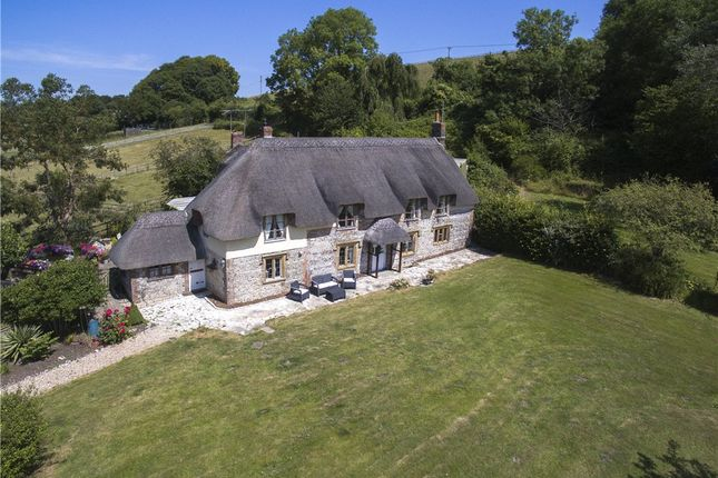 Thumbnail Equestrian property for sale in North Street, Charminster, Dorchester