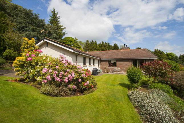 Thumbnail 5 bed detached bungalow for sale in Leal House, Alyth, By Blairgowrie, Perthshire