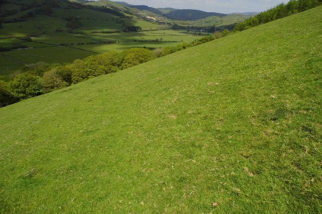 Thumbnail Land for sale in Llanwrin, Machynlleth, Powys