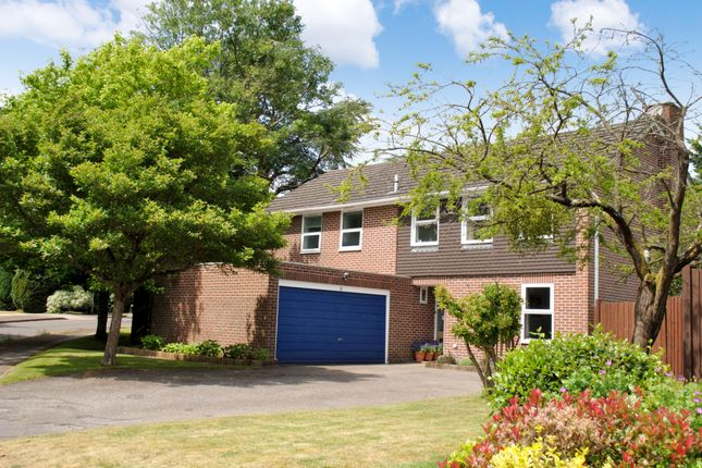 Thumbnail Detached house for sale in Douglas Ride, Woolton Hill, Newbury