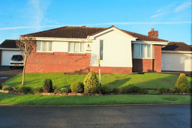 Thumbnail Bungalow for sale in Blenheim Close, Torquay
