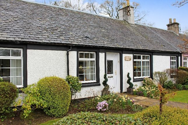 Thumbnail Cottage for sale in 3 Whitecross Cottages, Perth Road, Dunblane, Dunblane