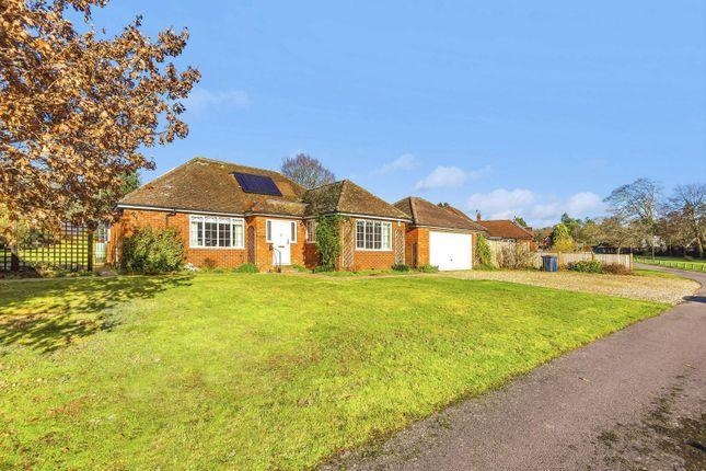 Thumbnail Detached bungalow for sale in Tilford Street, Tilford, Farnham