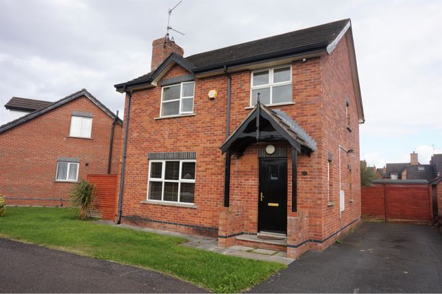 Thumbnail Detached house for sale in Carnreagh, Craigavon