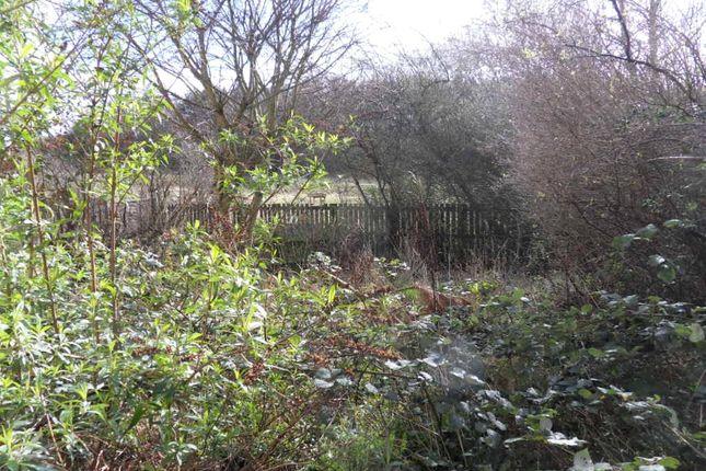Picture No. 14 of Becks Court, Earlsheaton, Dewsbury, West Yorkshire WF12