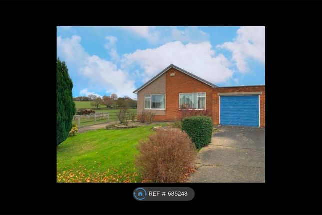 Thumbnail Detached house to rent in Roseberry Crescent, North Yorkshire