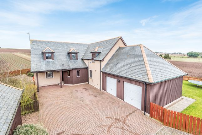 Thumbnail Detached house for sale in Montrose