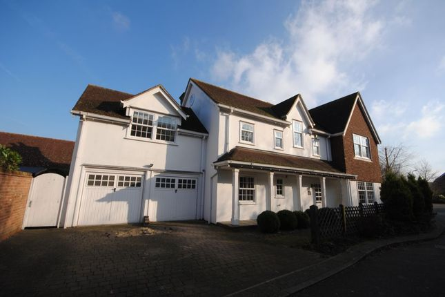 Thumbnail Detached house for sale in Petworth Close, Great Notley, Braintree