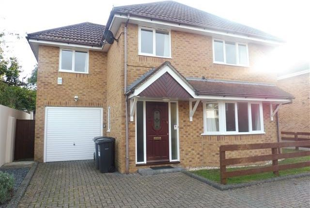 Thumbnail Property To Rent In Abbott Close Winton Bournemouth