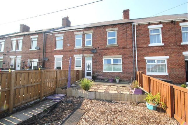 Thumbnail Terraced house for sale in Lime Street, Stanley