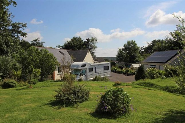 Thumbnail Detached bungalow for sale in Newton St. Petrock, Holsworthy