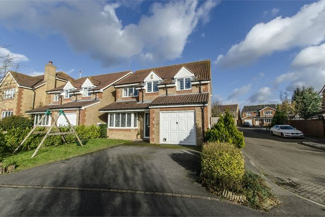 Thumbnail Detached house for sale in Strawberry Mead, Fair Oak, Eastleigh, Hampshire