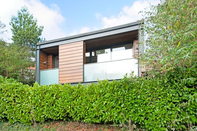 Thumbnail Detached house to rent in Bereweeke Avenue, Winchester
