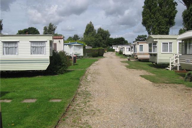 Thumbnail Land for sale in Norfolk Broads Caravan Park, Bridge Road, Potter Heigham, Norfolk, UK