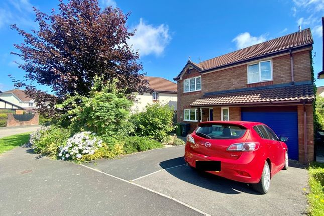 Thumbnail Detached house for sale in Middle Combe Drive, Roundswell, Barnstaple