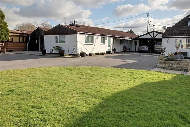 Thumbnail Bungalow to rent in Clivey, Dilton Marsh, Westbury
