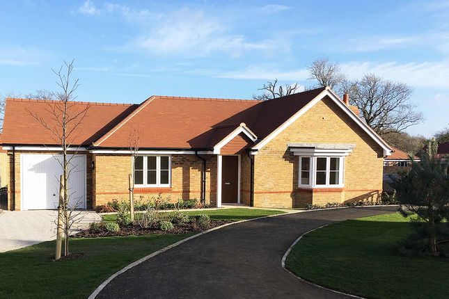 Thumbnail Detached bungalow for sale in The Bayberry, Lea Meadow, Peppard Road, Sonning Common, Reading, Berkshire
