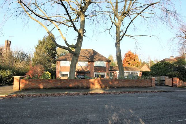 Thumbnail Detached house to rent in Grove Road, Beaconsfield