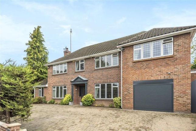 5 bed detached house to rent in Lime Avenue, Camberley GU15