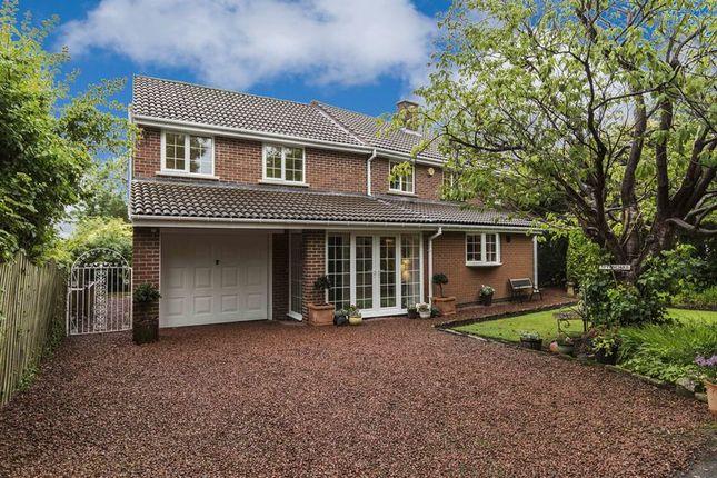 Thumbnail Detached house for sale in Oak Lane, Shotley Bridge, Consett