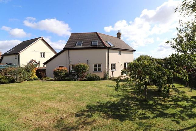 Picture 12 of Little Meadow, Pyworthy, Holsworthy EX22