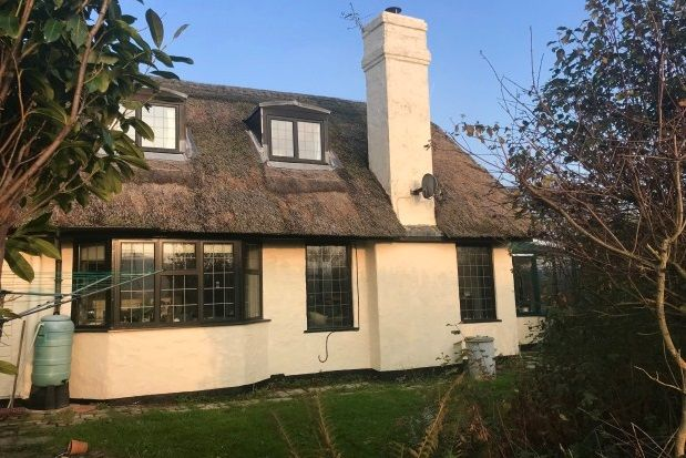 Thumbnail Cottage to rent in Broadoak, Bridport