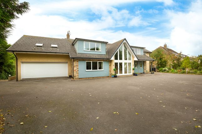 Thumbnail Detached house for sale in The Warren, Witchford, Ely, Cambridgeshire