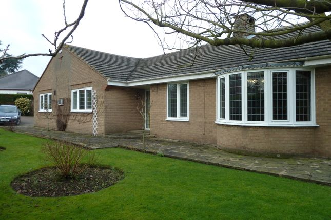 Thumbnail Detached bungalow to rent in Newmarket, Louth