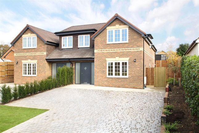 Thumbnail Semi-detached house for sale in Mount Drive, Park Street, St. Albans, Hertfordshire