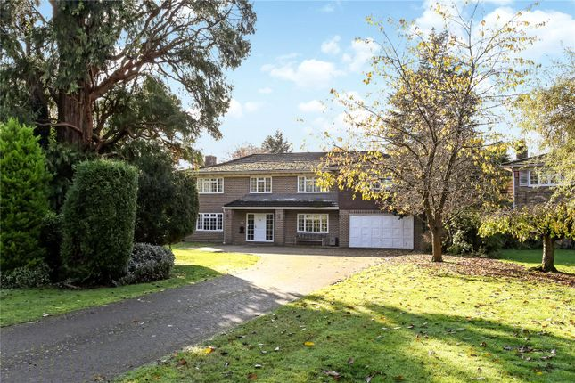 Picture No. 18 of Armitage Court, Sunninghill, Berkshire SL5