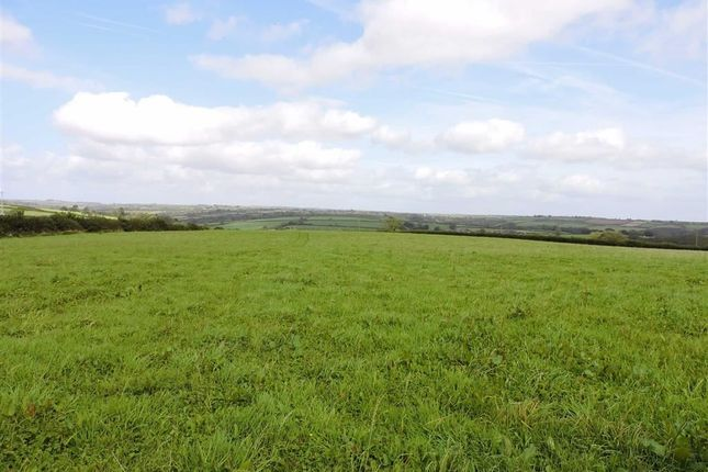 Thumbnail Land for sale in Cwmbach, Whitland, Carmarthenshire