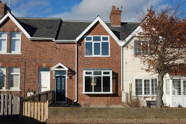 Thumbnail Terraced house for sale in March Terrace, Dinnington, Newcastle Upon Tyne
