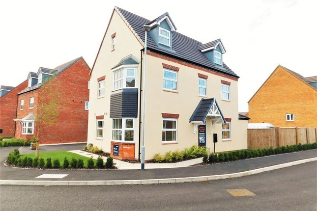 Thumbnail Detached house for sale in Sandpiper Drive, Stafford