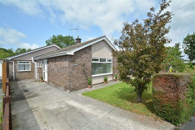 Thumbnail Detached bungalow to rent in Meadowside, Mold
