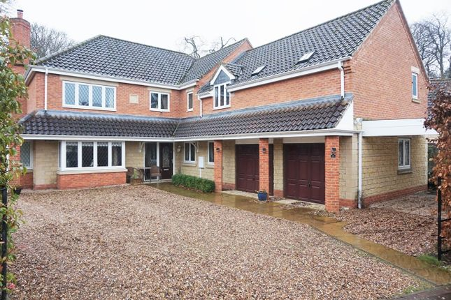 Thumbnail Detached house for sale in Parklands Avenue, Nocton