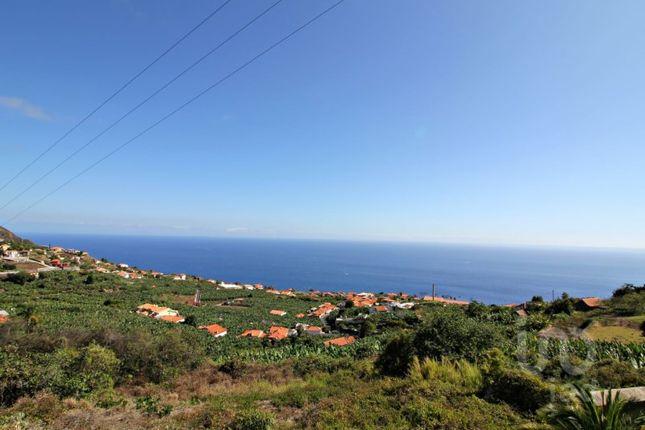 Thumbnail Finca for sale in Arco Da Calheta, Calheta (Madeira), Ilha Da Madeira