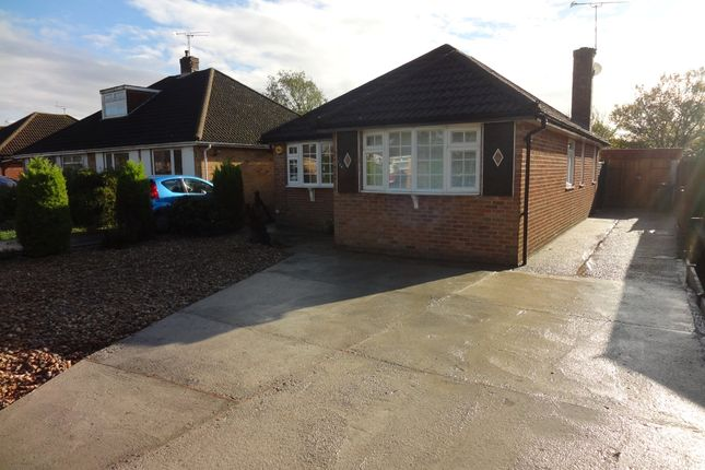 Thumbnail Detached bungalow to rent in Sunnymead Drive, Waterlooville