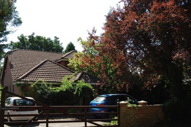 Thumbnail Detached house for sale in Linsford Lane, Mytchett, Camberley