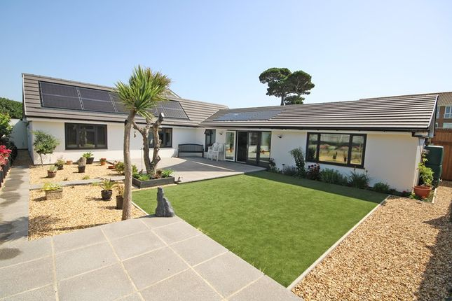 Thumbnail Detached bungalow for sale in White Knights, Barton On Sea, New Milton