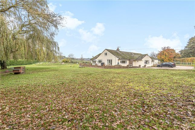 Thumbnail Detached bungalow for sale in Moreton Road, Owermoigne, Dorchester, Dorset