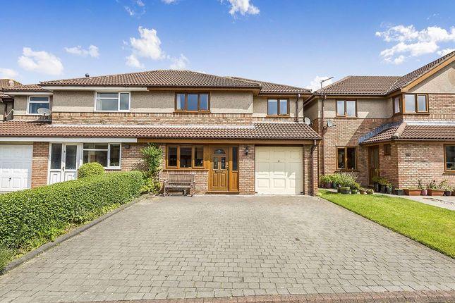 Thumbnail Semi-detached house to rent in Windsor Gardens, Garstang, Preston