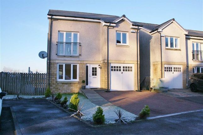 Thumbnail Detached house for sale in Ochil Gardens, Bonnybridge, Stirlingshire