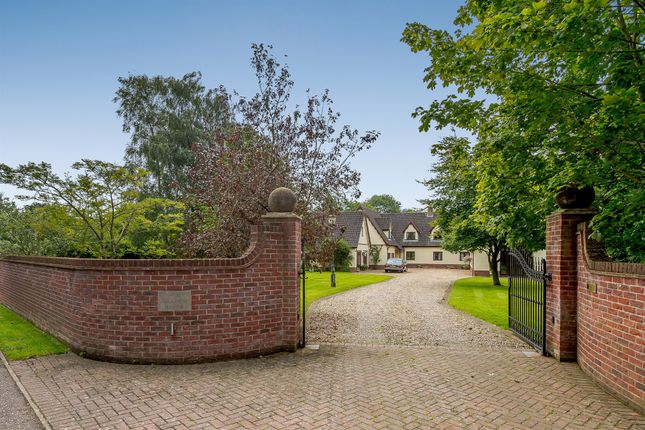 Thumbnail Detached house for sale in Bells Meadow, Necton, Swaffham