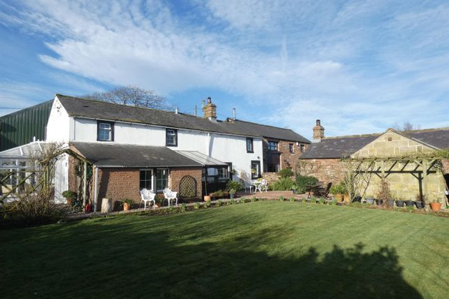 Thumbnail Semi-detached house for sale in Winskill, Penrith