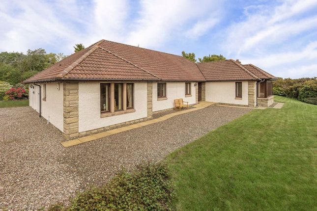 Thumbnail Bungalow for sale in Comerton Place, Drumoig, Fife