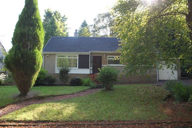Thumbnail Detached bungalow to rent in Churchill Place, Kilbarchan, Johnstone