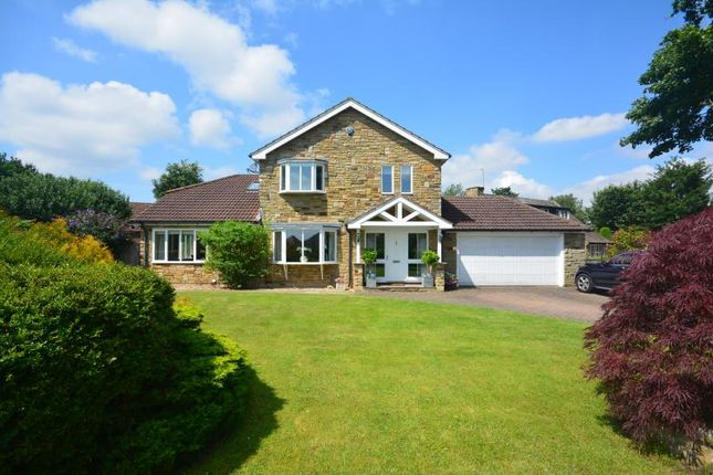 Thumbnail Detached house to rent in Cat Lane, Bilbrough, York, North Yorkshire