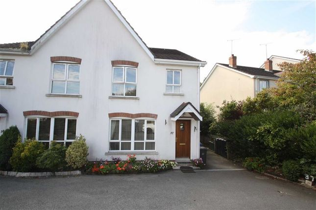 Thumbnail Semi-detached house to rent in Drummond Brae, Ballynahinch, Down
