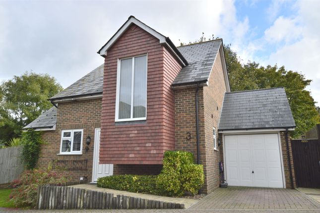Thumbnail Detached house for sale in Wraymead, St Leonards