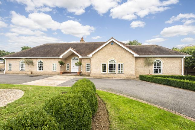 Thumbnail Bungalow for sale in The Avenue, Godmanchester, Huntingdon, Cambridgeshire